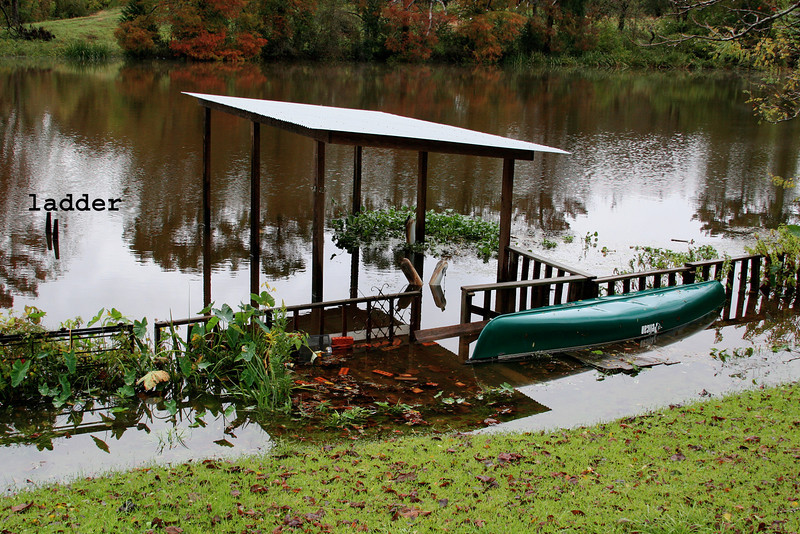 Flood of 2009. Overnight our dock disappeared.  The top of the ladder sticks up. The water hyacinths float above the deck and the water creeps into the yard and up the hill past and over the submerged retaining wall. Took Joe to the airport at 4AM in the deluge. Class was canceled due to the storms and I have been in my pajamas ever since.