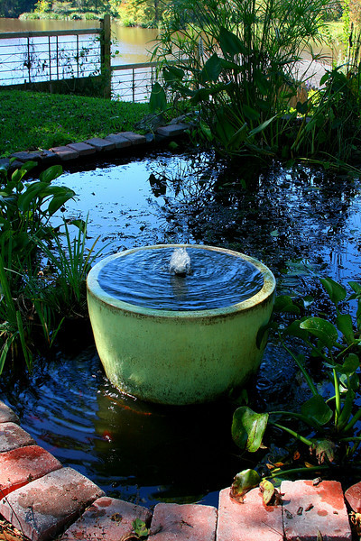 My Fountain is fixed! (It was broken). Me and my fish, frogs, spiders, lizards, dragonflies, and other various residents are very happy about it!