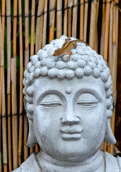 This is not Buddha and a Lizard. (or as Magritte would have said, This is not a Pipe. But he would said it in French)