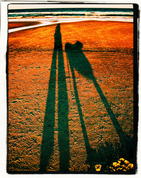 Sue felt well enough to venture to the beach last evening. Our shadows were long and drawn but our spirits were high.