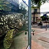 """""""Watching traffic"""" - 14 May. Spotted this huge fish outside a restaurant in Saigon, watching the traffic while waiting for his turn to show up on some ones plate"""