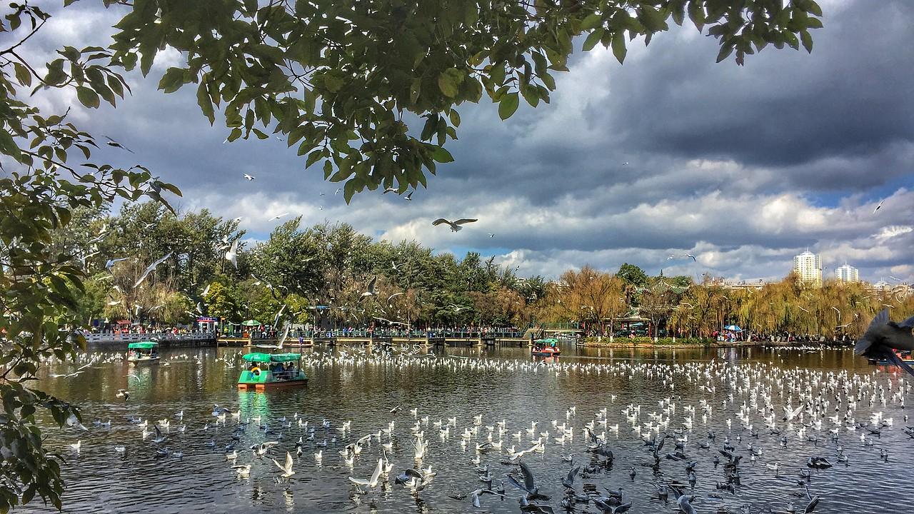 Sat Jan 07 - Green lake
