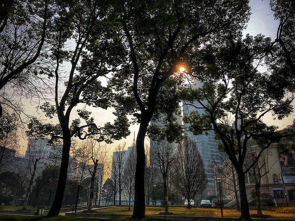 Thursday Feb 01 - Huaihai park