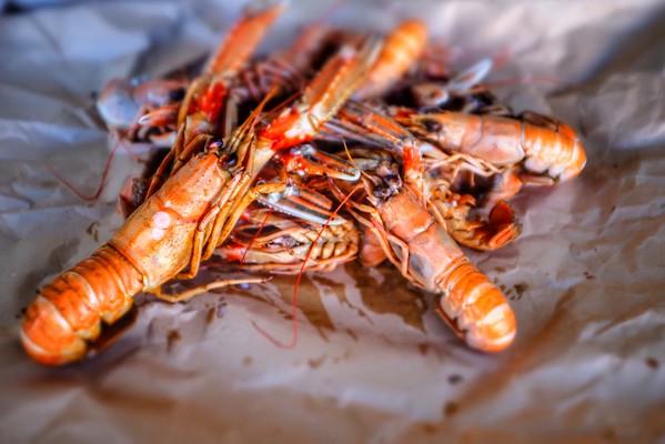 Wednesday July 25 - Crayfish