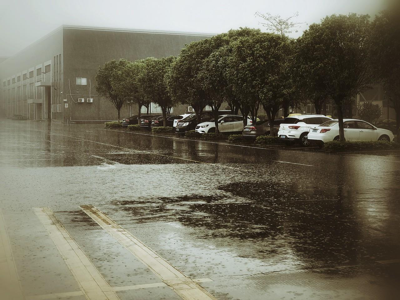 Thursday Mar 15 - Rainy south