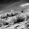 """Infrared"" - Wed 25 June<br /> <br /> My 45 min ride to office takes me across this wooden bridge every time. Had to make it infrared to make it look more interesting than it is.."