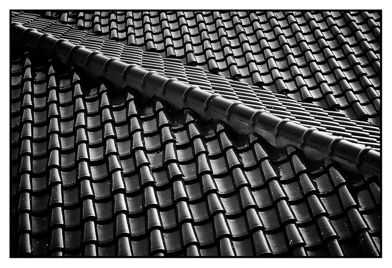 Thu 11 Feb - Roof Top<br /> <br /> Early morning shot from the window down on a building next to the hotel