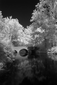 Day 1 of my new Photo-A-Day project!  It was a nice day for some IR shots so Gina and I went to Sharon Woods.