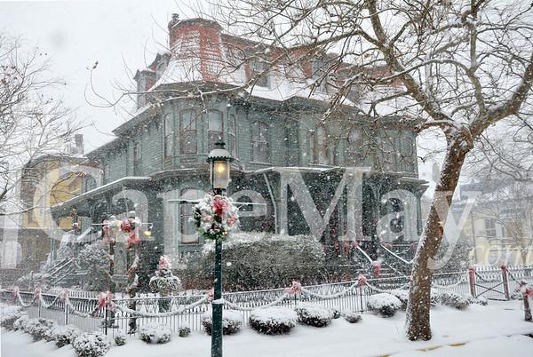 December 2010: Snowy Queen V