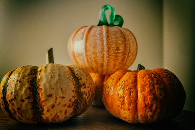 One of this gourds is not like other…