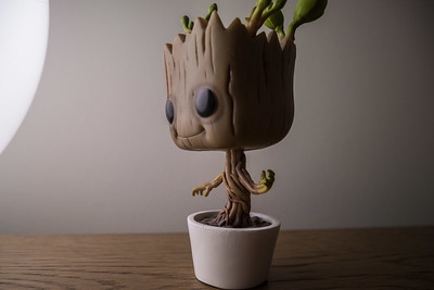 """I'm Groot!"""