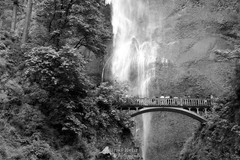 Mutllnomah Falls - OR.