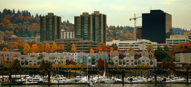 Fall on the Waterfront - Portland, Oregon.<br /> <br /> Thank you all for your comments on yesterday's photo.