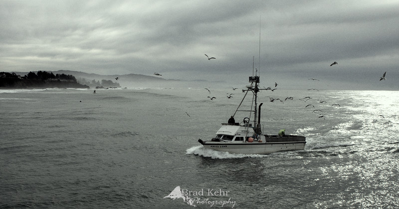 Returning home - a crab fisherman returns to port after a stretch at sea.<br /> <br /> I shot this off a jetty on the Oregon coast and was lucky to have the combination of the low sky, rolling waves, and the fishermen dropping bait off the back to attract the seagulls.