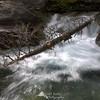 Waterfall - Glacier National Park
