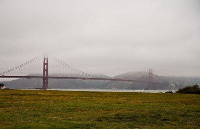 This picture was taken to encapsulate today's weather in the Bay Area. Wet and dreary. :)