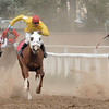 15 july 2012 (1h38mn04s PM)  Races in Gunnison ( Rodeo ground)