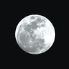 Dick Wright shares a picture of the Jan. 31 Super Moon