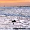 West beach sunrise by Phillip Thomas.
