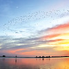 Galvez Landing sunset and birds by Cathy Deal