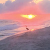 """Enjoying a beautiful sunset at West Beach - Gulf Shores,'' writes De Ann Roy."