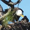 Ken Groezinger shares nature shots.