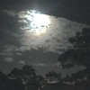 Moon Rising Over Gulf Shores