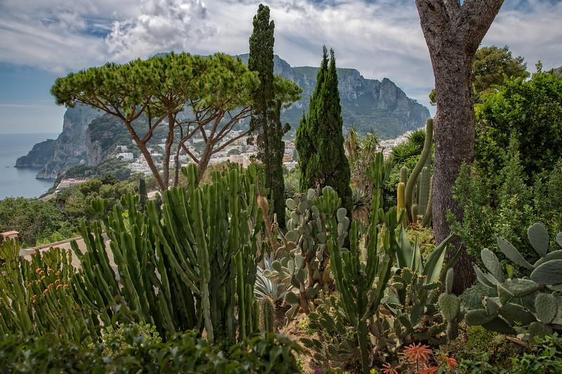 Beautiful mediterranean garden with cacti plants on the Capri Island