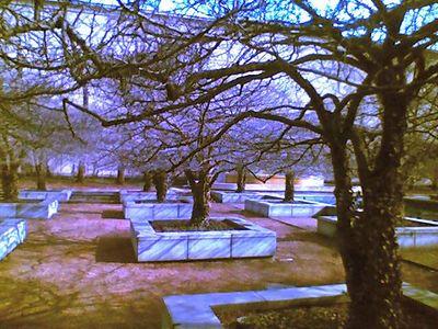 AIC Garden