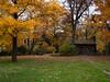 03-Fall-2009-10-28(13.55)_1000355