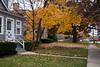 02-Fall-2009-10-28(13.52)_1000354
