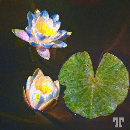 water-lilies-mod-painting-2
