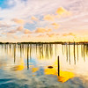 DSC03538 David Scarola PHotography, Marsh Harbour, Bahamas Sunrise, sept 2017