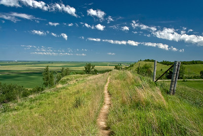 This photo was taken on the trail from the Murray Hill Scenic Overlook on The Loess Hills Scenic Byway on the Fountainbleu Loop. The clouds and blue sky sure adds to the photo.