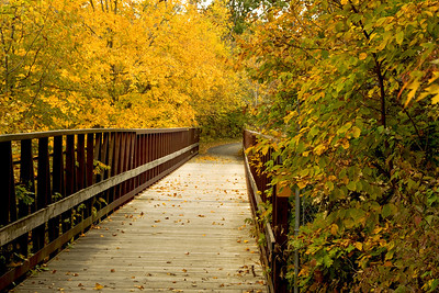 This is a great photo along the Neal Smith bike trail near Polk City, IA with fall color and one of the bridges over the deep valleys that lead into Saylorville Lake