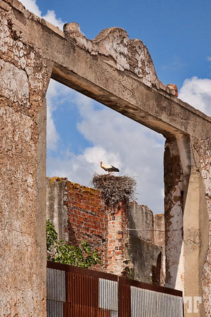 crane-framed-silves-portugal