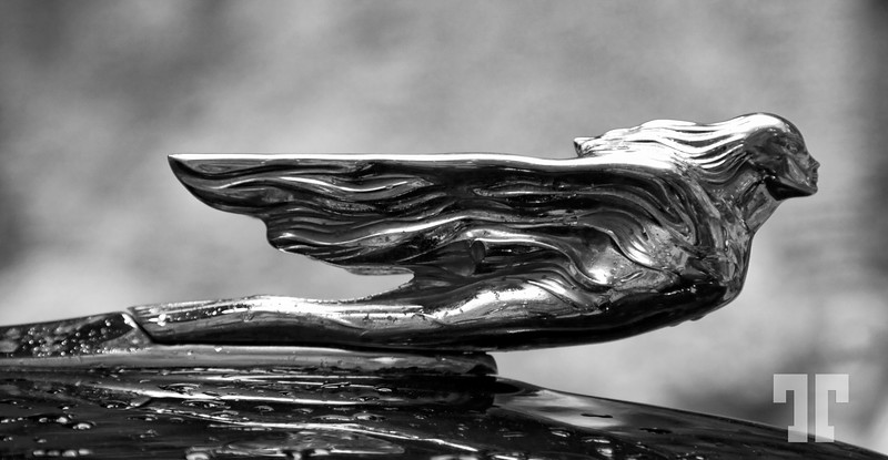 Hood ornament on the sank Cadillac - Dali museum, Figueres, Spain  (XX, BB)