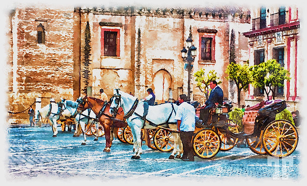 horse-drown-chariots-seville-spain