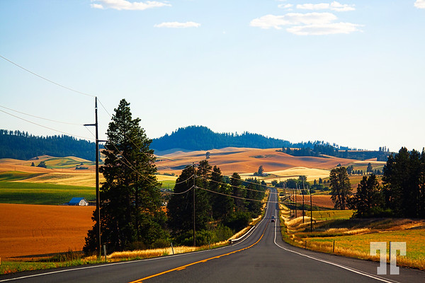 Idaho-landscape-road-July-studio