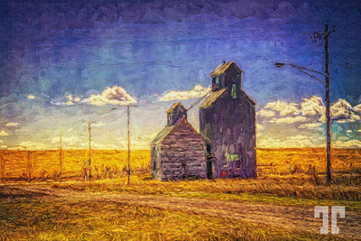 cottonwood-south-dakota-5-AUmod2-studio-Painting-texture