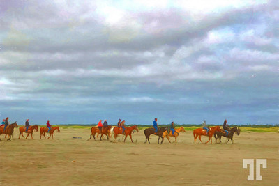 Ocen-Shores-WA-beach-horses-ColoredPencil