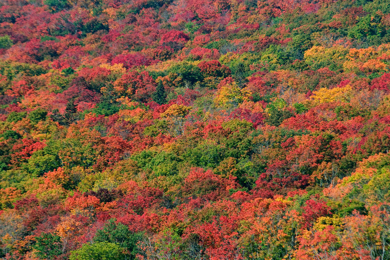 We also drove up to Lutsen Mountain.  Here is a view of the colorful hill that you see when you get up there.