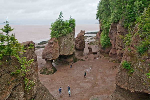 "Between New Brunswick and Nova Scotia is the Bay of Fundy.  The highest tides in the world occur here.  We visited Hopewell Rocks Park ( <a href=""http://www.thehopewellrocks.ca/English/parkinfo.htm"">http://www.thehopewellrocks.ca/English/parkinfo.htm</a>  ) which is in New Brunswick.  In this picture, taken at low tide, and the next one, taken in the same location at high tide, you can see a dramatic example of the difference.  These sandstone formations have been carved out over the years by wave action.  The people in the photo give you some perspective on the size of the formations."