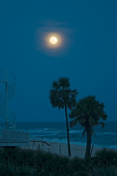 I took this photo of the full moon over the Gulf of Mexico from the deck of the house where we are staying.  I like how the hazy sky forms a ring around the moon.