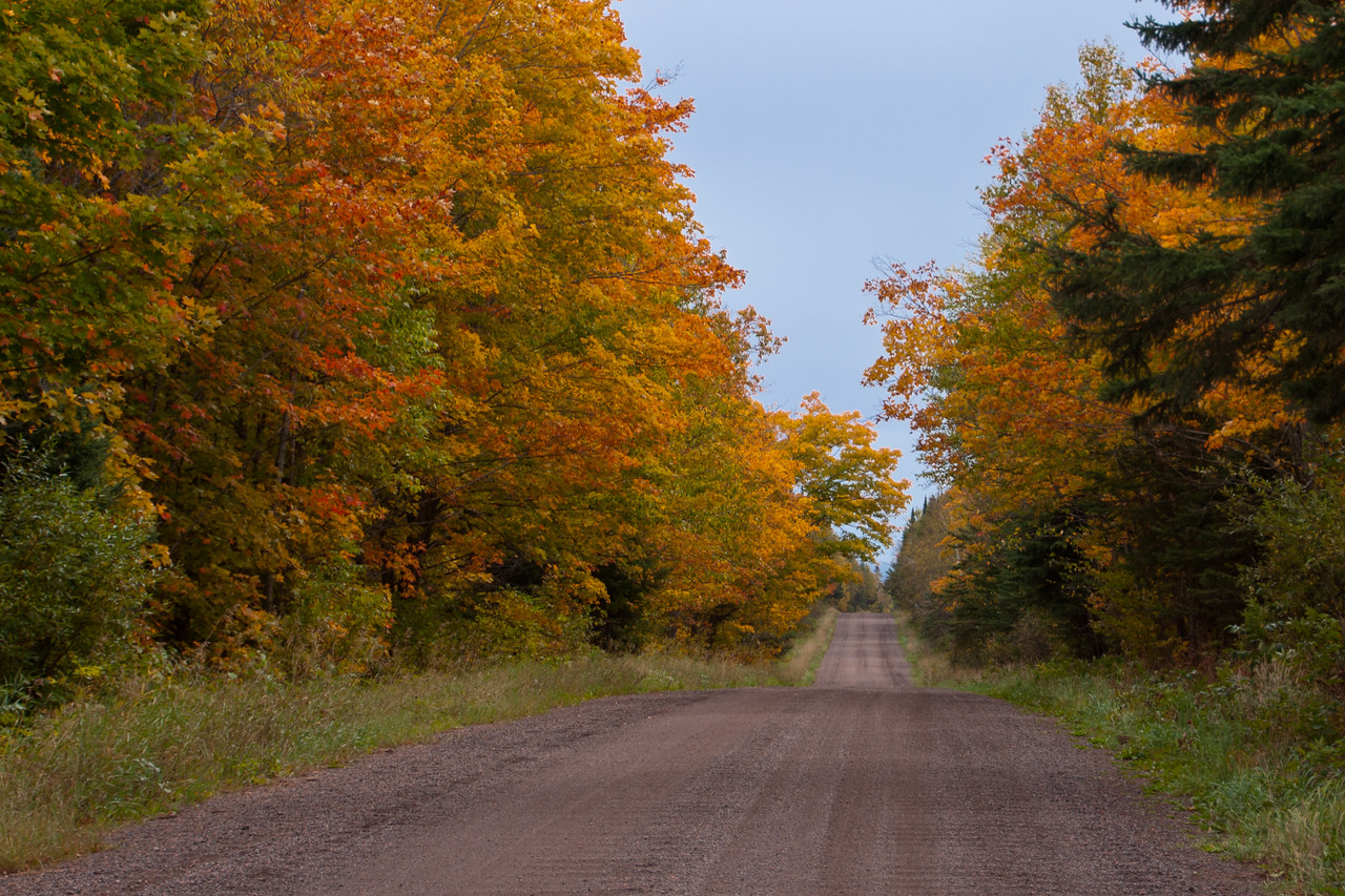 Here's a look at the fall colors along the Temperance River Road.  They were just hitting the peak of their brilliance.