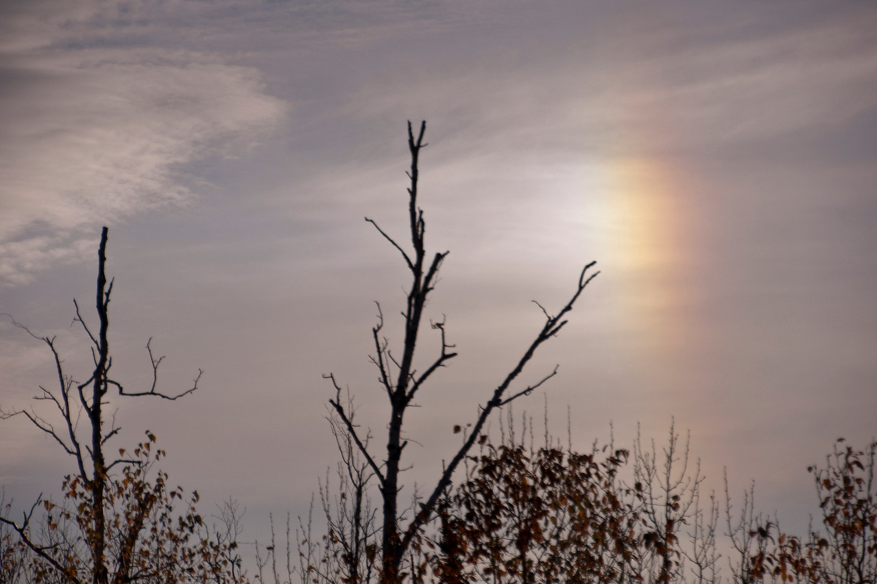 Three weeks ago I showed you some snow photos taken during the workshop.  As we drove along the Gunflint Trail to get those photos, we saw this Sundog.  When there are ice crystals in the air, they can act like a prism and reflect the sunlight in a rainbow pattern.  Sundogs can occur on both sides of the sun and they are at the same distance above the horizon as the sun.