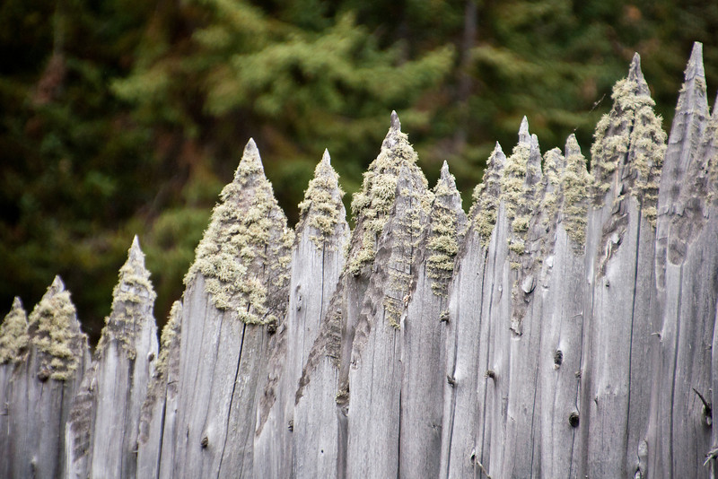 Grand Portage had stockade walls built around the entire area.  These are replicas, of course, but I liked the effect of the lichens growing on the pointed ends of the logs.