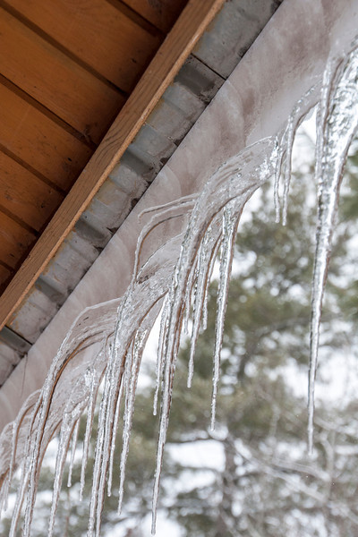 This picture was taken looking up at the underside of our roof.  The silver strip in the center is the edge of the metal roof.  As the snow curls around the edge of the roof, the icicles also curve around and start pointing toward the house.  But, the melting continues.  As the water runs down the icicle, it freezes and points toward the ground.  This causes a bend in the icicle.