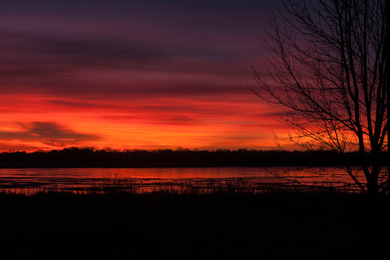 The day I visited the bog, I started out early from our apartment in Shoreview.  I stopped at Rice Lake in Lino Lakes to photograph this colorful sunrise.