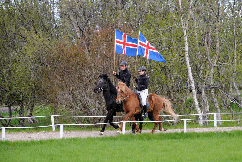 At the Friðheimar Farm in Bláskógabyggð, Iceland, we were treated to a show featuring Icelandic Horses.  The show opened with the farm owner and his wife riding their horses around the track carrying Icelandic flags.